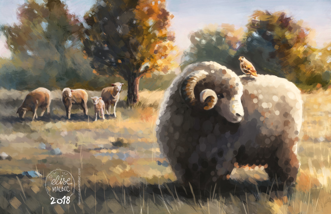 Illustration Merinos